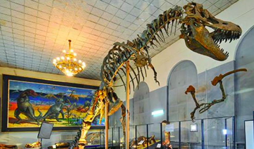 Central Museum of Mongolian Dinosaurs