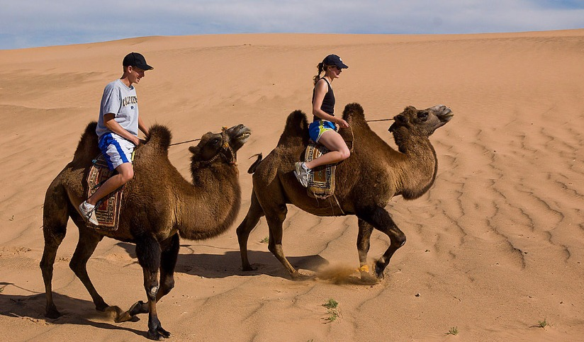 Camel Trekking in the Gobi